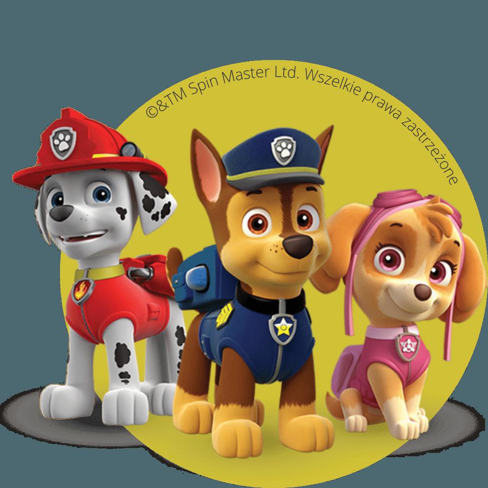 Psi Patrol Licencja Wydarzenie Event